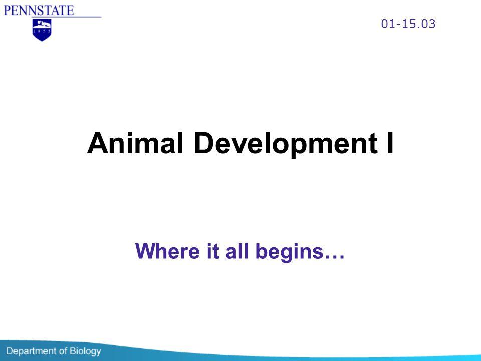 Animal Development I Where it all begins… 01-15.03