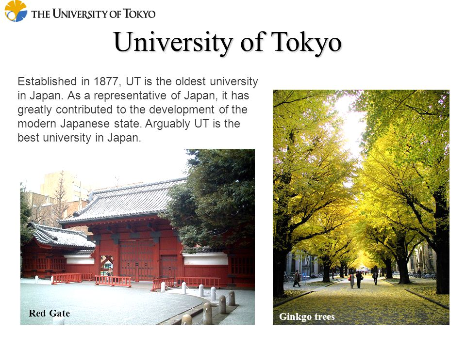 University of Tokyo Red Gate Ginkgo trees Established in 1877, UT is the oldest university in Japan. As a representative of Japan, it has greatly cont
