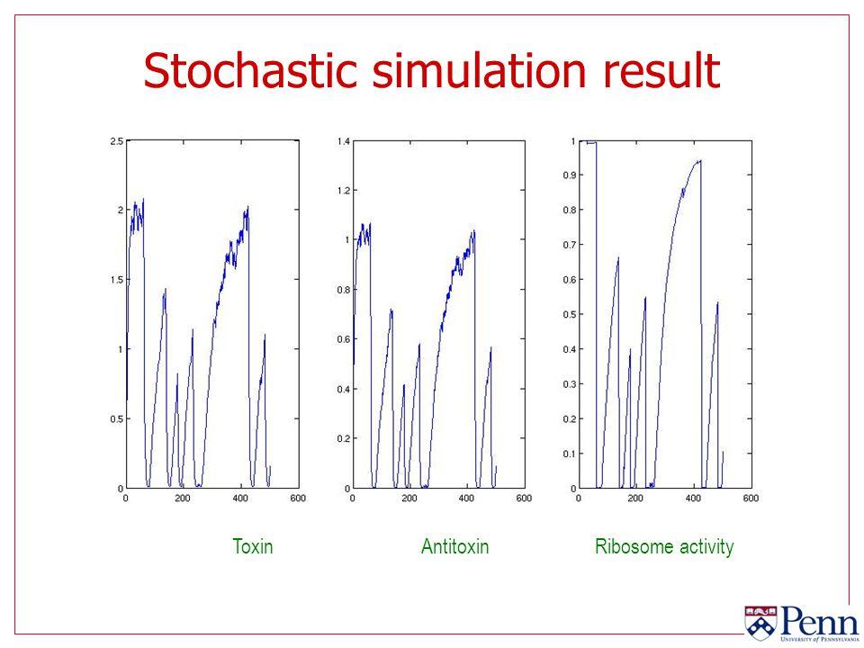Stochastic simulation result ToxinAntitoxinRibosome activity