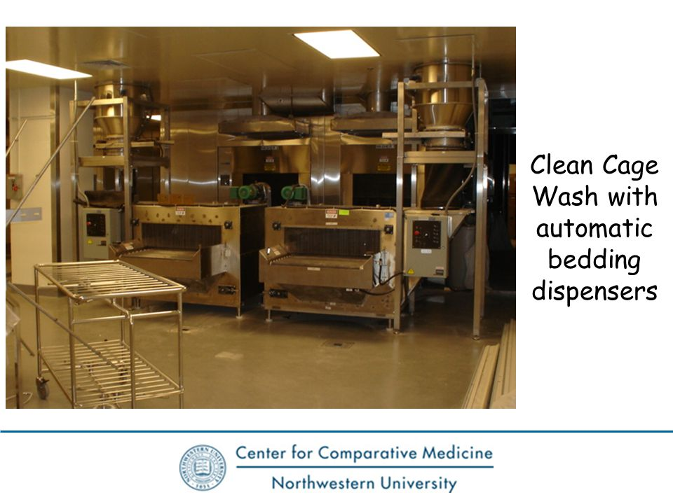 Clean Cage Wash with automatic bedding dispensers