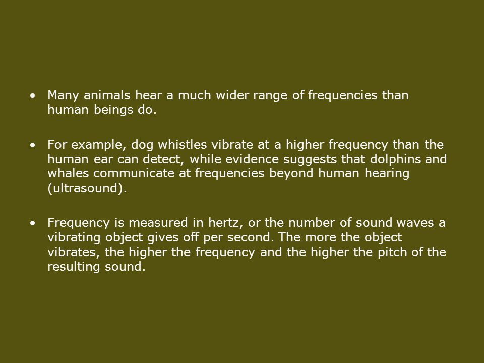 Many animals hear a much wider range of frequencies than human beings do.