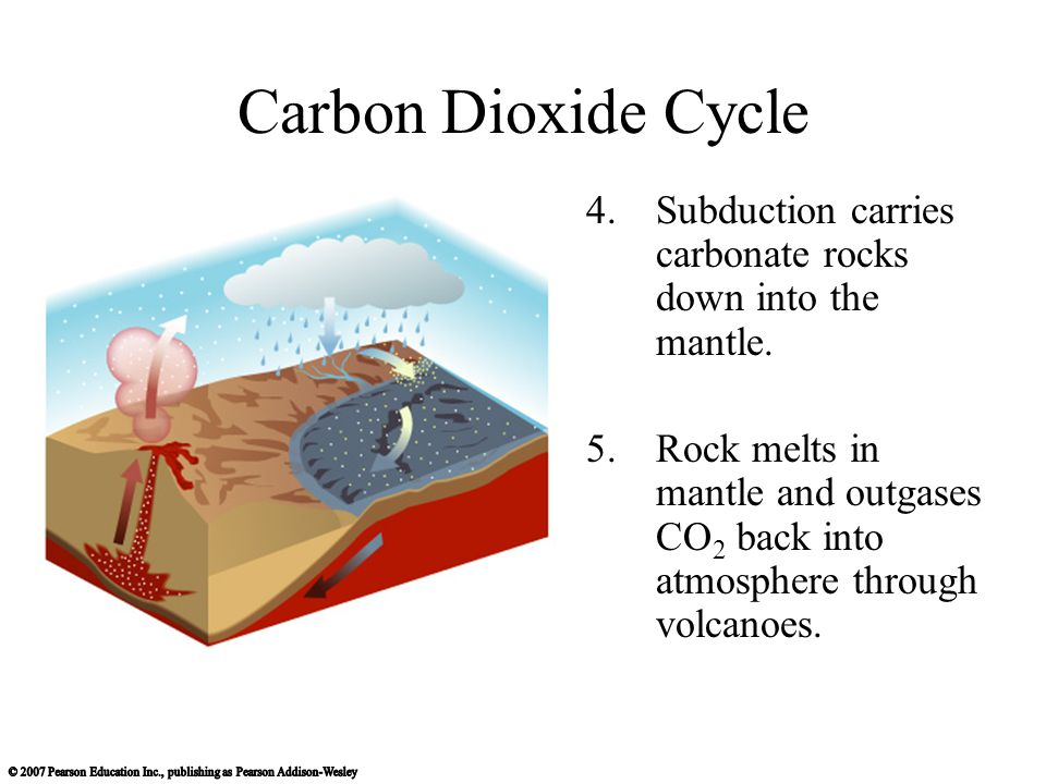 Carbon Dioxide Cycle 4.Subduction carries carbonate rocks down into the mantle.