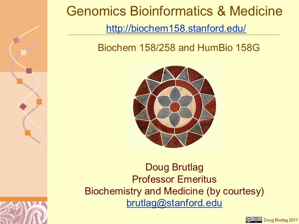 Doug Brutlag 2011 Genomics Bioinformatics & Medicine http://biochem158.stanford.edu/ http://biochem158.stanford.edu/ Biochem 158/258 and HumBio 158G Doug Brutlag Professor Emeritus Biochemistry and Medicine (by courtesy) brutlag@stanford.edu