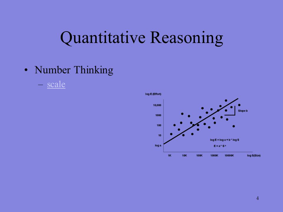 Quantitative Reasoning Number Thinking –scalescale 4