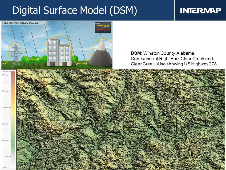 10 Digital Surface Model (DSM) DSM: Winston County, Alabama.