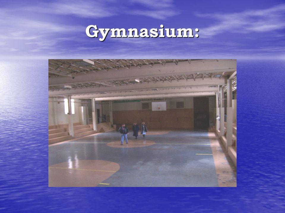 Gymnasium: