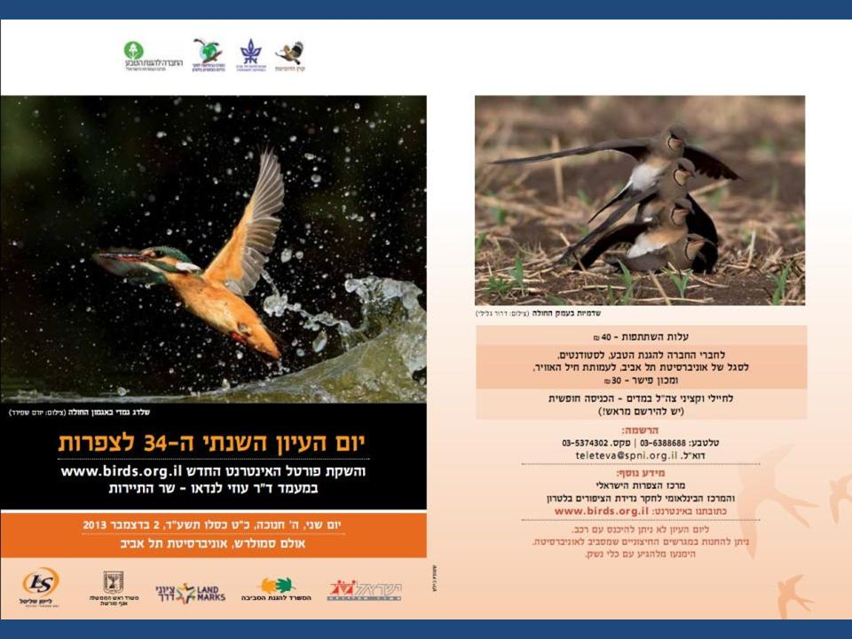 Photographic competition in the name of Amit Geffen of blessed memory