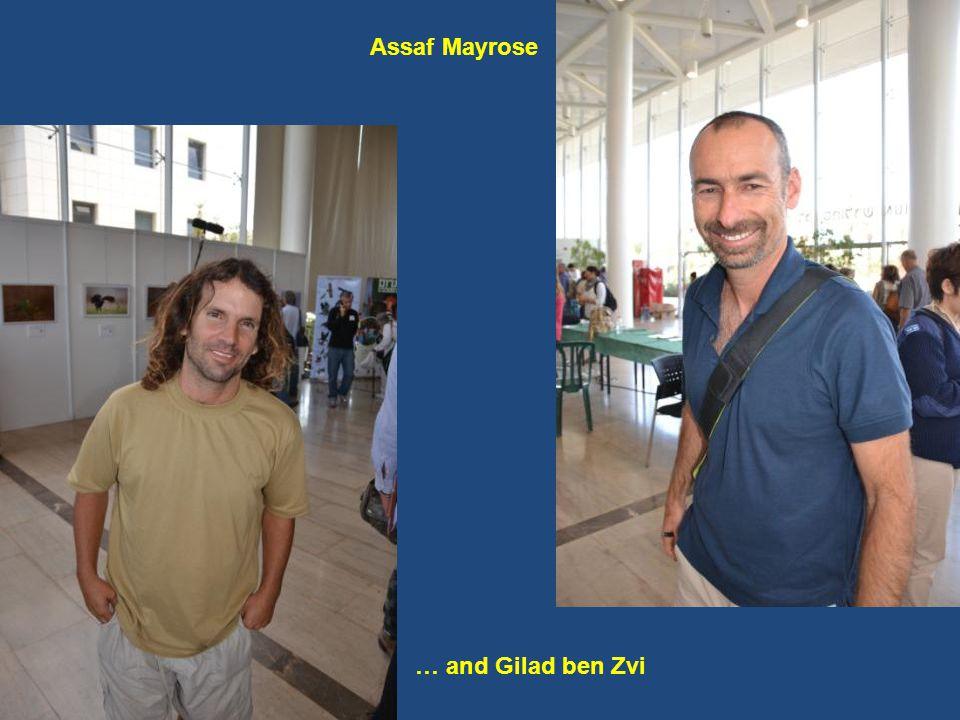 … and Gilad ben Zvi Assaf Mayrose