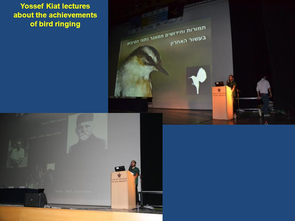 Yossef Kiat lectures about the achievements of bird ringing