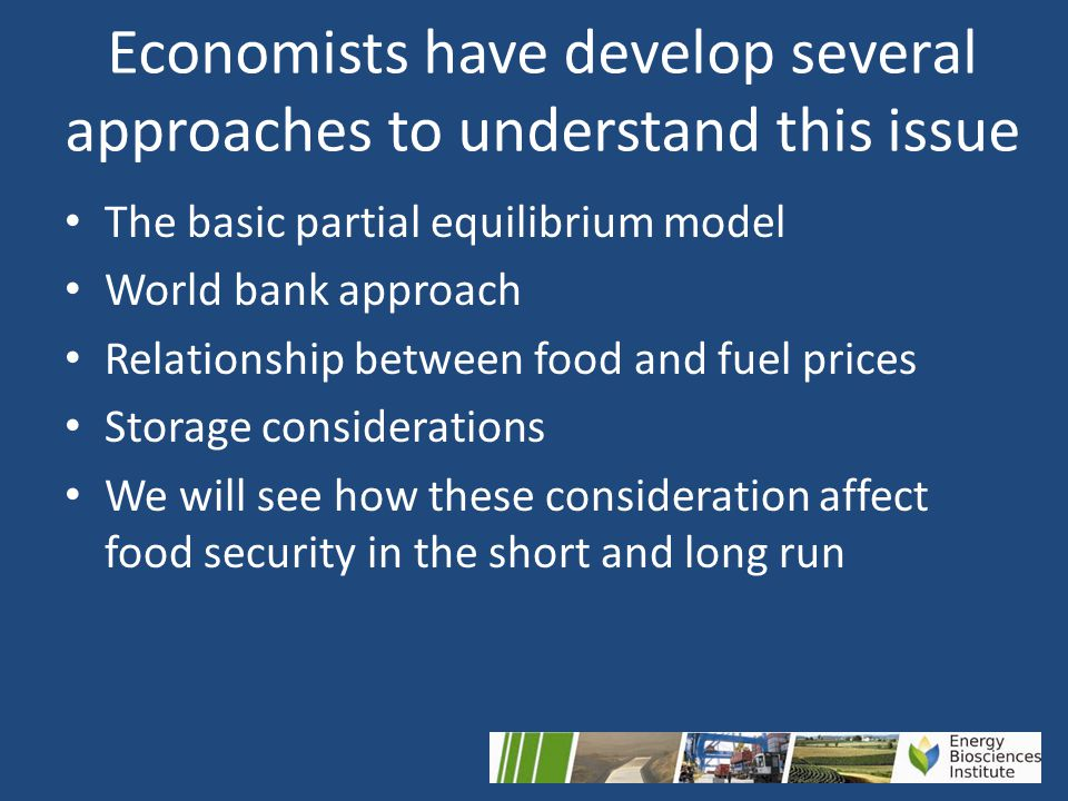 Economists have develop several approaches to understand this issue The basic partial equilibrium model World bank approach Relationship between food and fuel prices Storage considerations We will see how these consideration affect food security in the short and long run