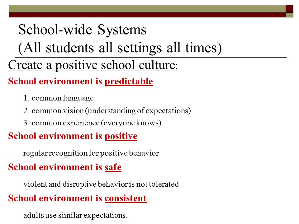 School-wide Systems (All students all settings all times) Create a positive school culture : School environment is predictable 1. common language 2. c