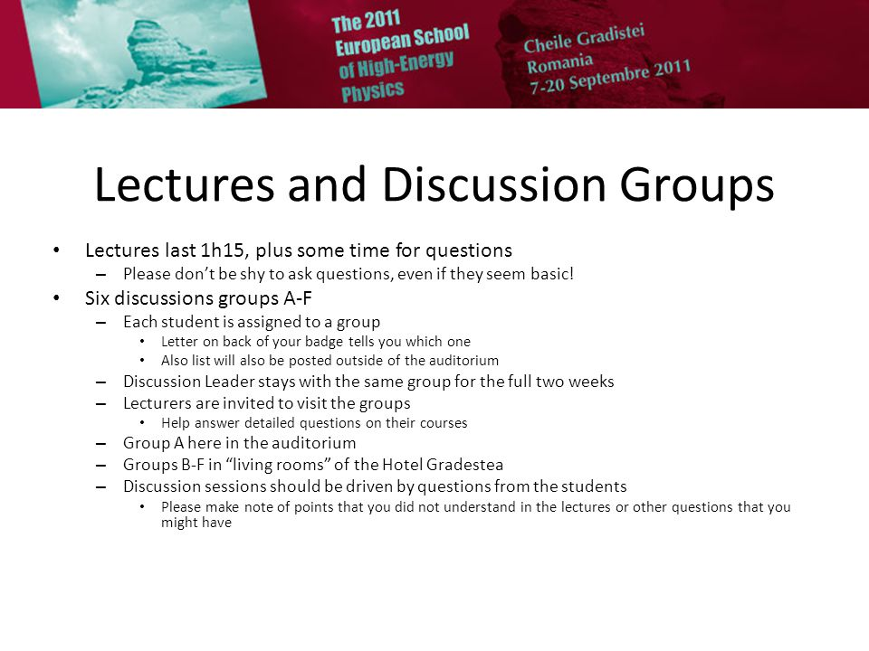 Discussion Leaders Discussion Groups – Group A: Calin Aleksa (in auditorium) – Group B: Alexander Bednyakov (hotel, floor 1 = entry) – Group C: Carla Biggio (hotel, floor 2 ) – Group D: Dumitru Ghilencea (hotel, floor 3 ) – Group E: Dmitry Gorbunov (hotel, floor 4 ) – Group F: Gregory Soyez (hotel, floor 5 ) I would like to meet the discussion leaders after lunch to explain a few points – Meet in the auditorium at 14h00