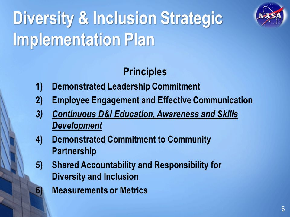 Diversity & Inclusion Strategic Implementation Plan Principles 1)Demonstrated Leadership Commitment 2)Employee Engagement and Effective Communication