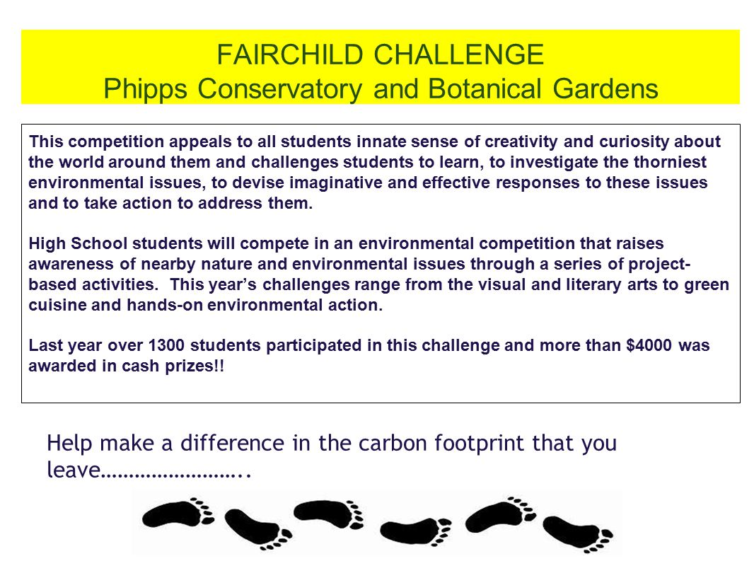 FAIRCHILD CHALLENGE Phipps Conservatory and Botanical Gardens This competition appeals to all students innate sense of creativity and curiosity about