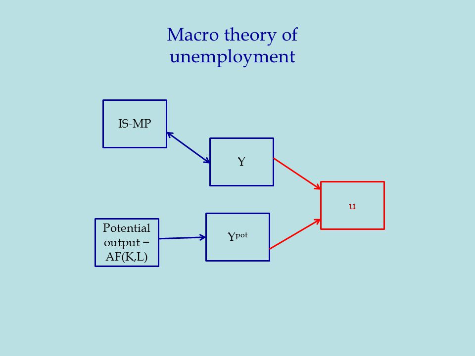 Macro theory of unemployment 3 IS-MP Y Potential output = AF(K,L) Y pot u