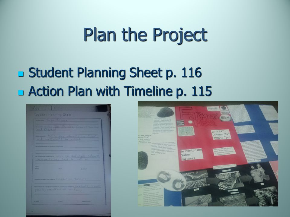 Plan the Project Student Planning Sheet p. 116 Student Planning Sheet p.