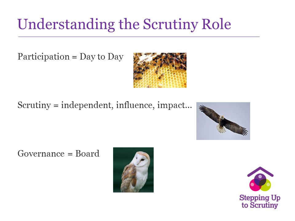 Understanding the Scrutiny Role Participation = Day to Day Scrutiny = independent, influence, impact… Governance = Board