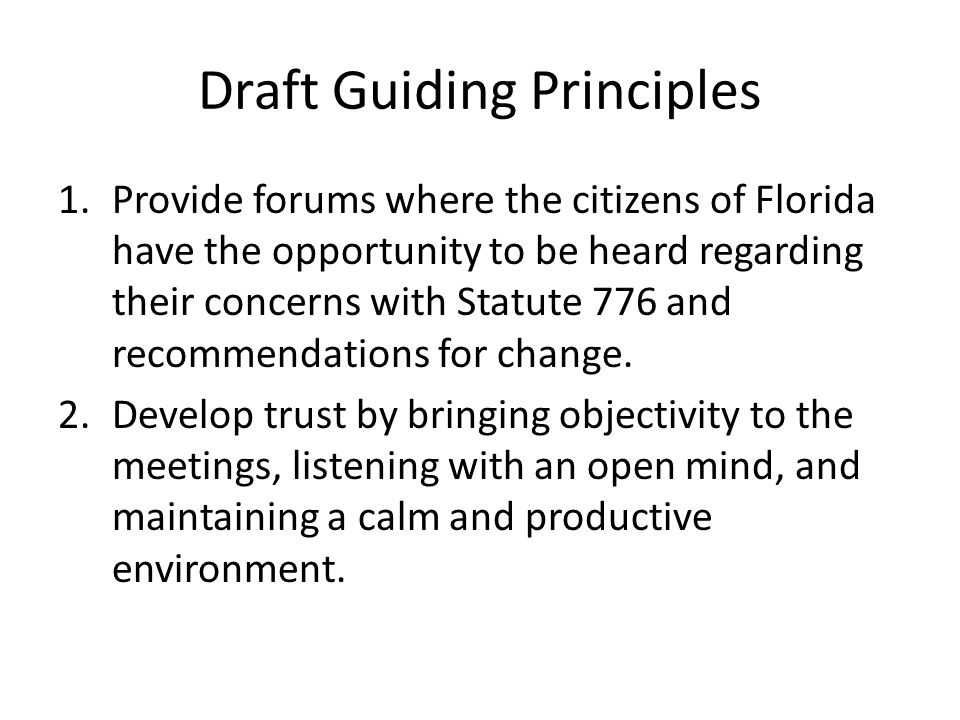 Draft Guiding Principles 1.Provide forums where the citizens of Florida have the opportunity to be heard regarding their concerns with Statute 776 and recommendations for change.