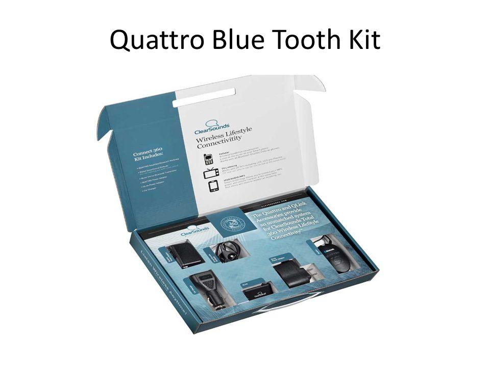 Quattro Blue Tooth Kit