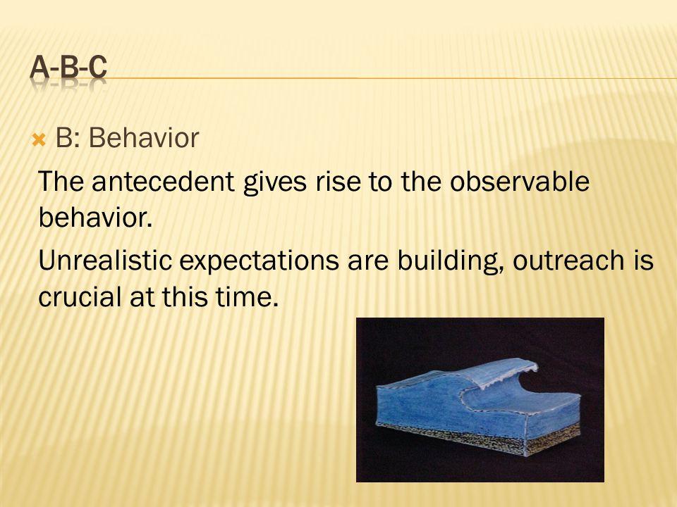  B: Behavior The antecedent gives rise to the observable behavior.