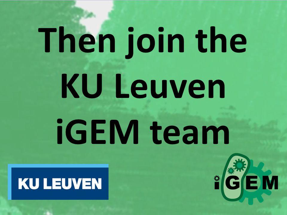 Then join the KU Leuven iGEM team