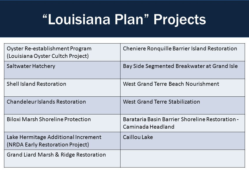 Oyster Re-establishment Program (Louisiana Oyster Cultch Project) Cheniere Ronquille Barrier Island Restoration Saltwater HatcheryBay Side Segmented Breakwater at Grand Isle Shell Island RestorationWest Grand Terre Beach Nourishment Chandeleur Islands RestorationWest Grand Terre Stabilization Biloxi Marsh Shoreline ProtectionBarataria Basin Barrier Shoreline Restoration - Caminada Headland Lake Hermitage Additional Increment (NRDA Early Restoration Project) Caillou Lake Grand Liard Marsh & Ridge Restoration Coastal Restoration Projects Louisiana Plan Projects