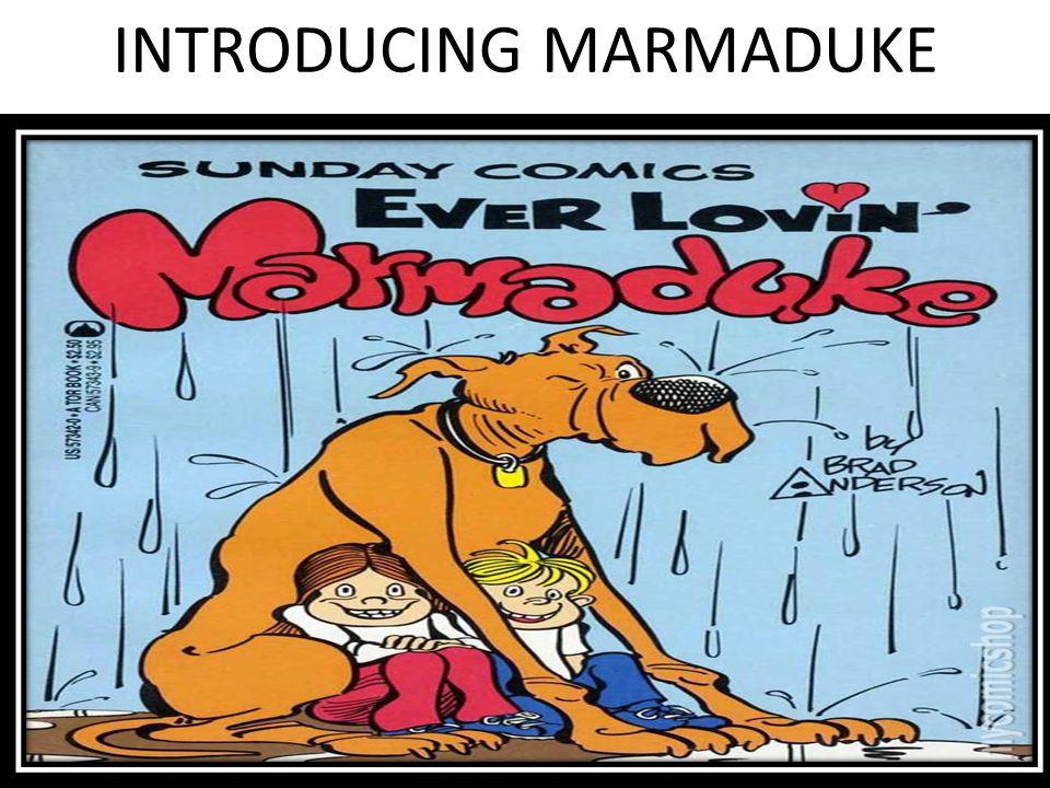 INTRODUCING MARMADUKE
