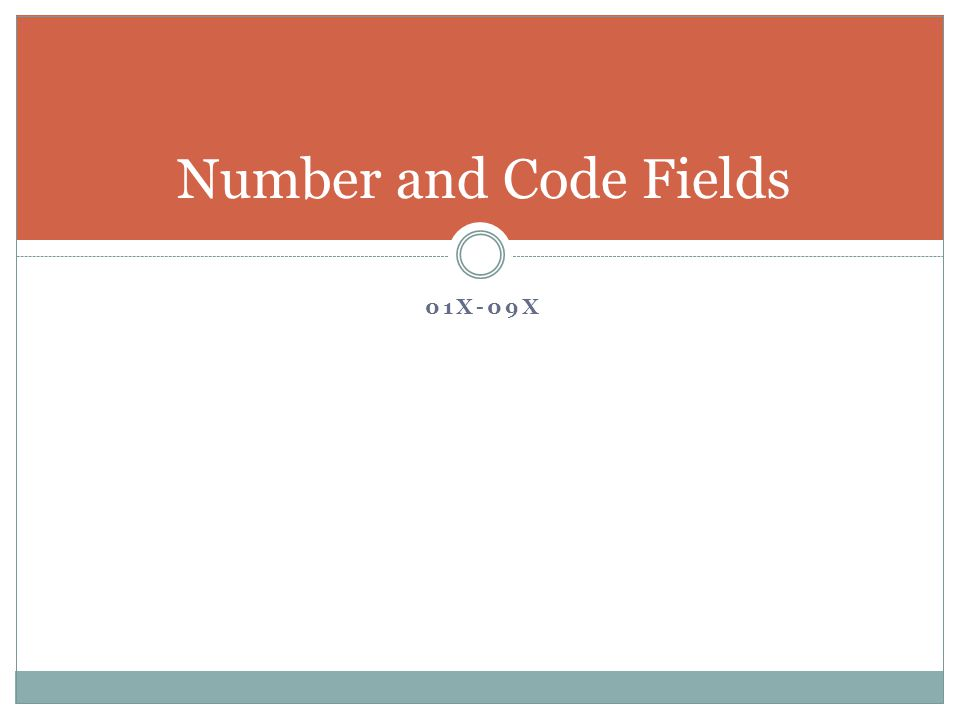 01X-09X Number and Code Fields