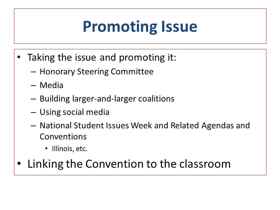 Promoting Issue Taking the issue and promoting it: – Honorary Steering Committee – Media – Building larger-and-larger coalitions – Using social media – National Student Issues Week and Related Agendas and Conventions Illinois, etc.