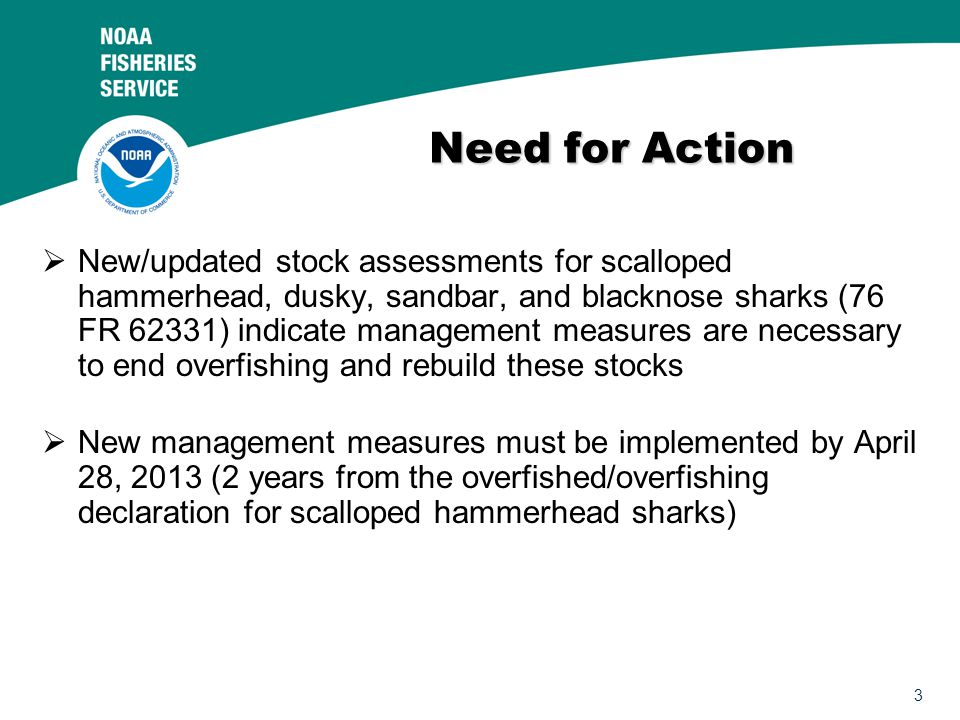 3 Need for Action  New/updated stock assessments for scalloped hammerhead, dusky, sandbar, and blacknose sharks (76 FR 62331) indicate management measures are necessary to end overfishing and rebuild these stocks  New management measures must be implemented by April 28, 2013 (2 years from the overfished/overfishing declaration for scalloped hammerhead sharks)