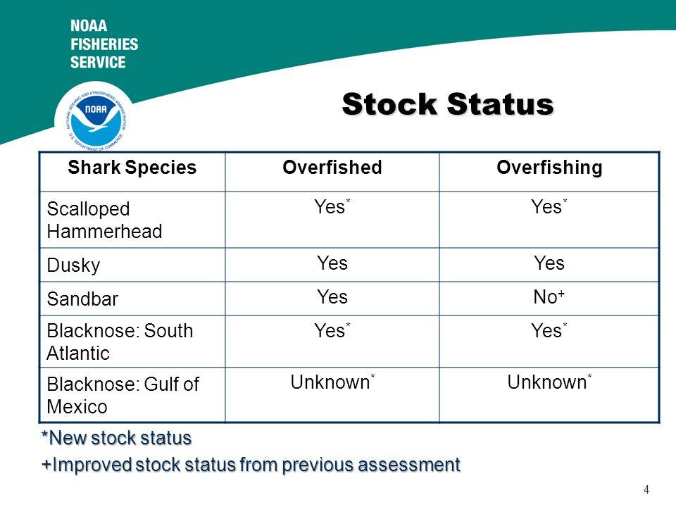 4 Stock Status Shark SpeciesOverfishedOverfishing Scalloped Hammerhead Yes * Dusky Yes Sandbar YesNo + Blacknose: South Atlantic Yes * Blacknose: Gulf