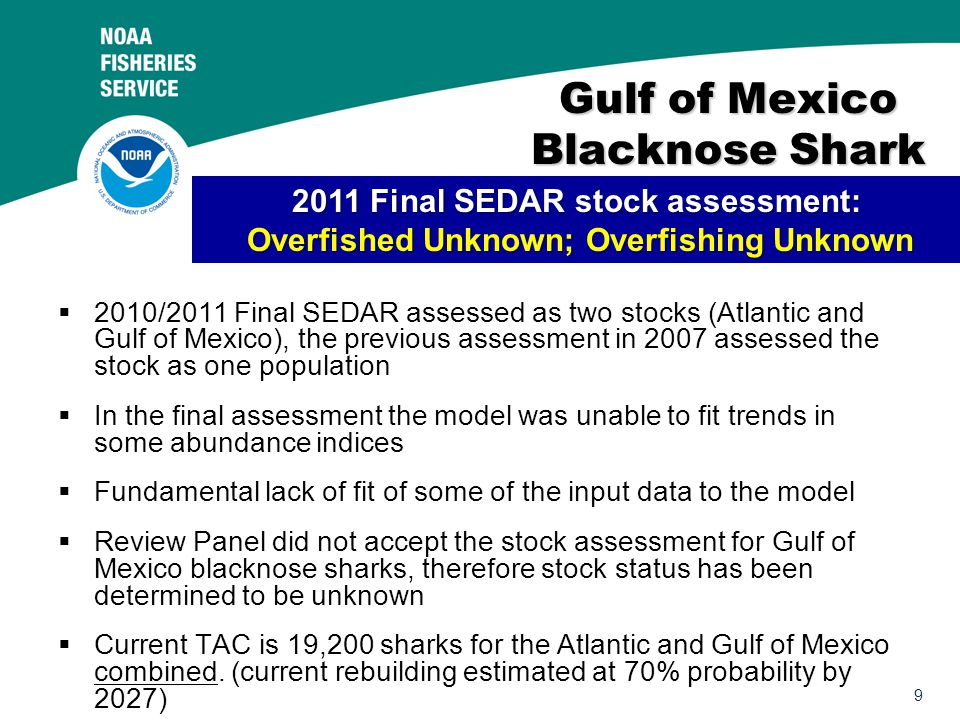 9 Gulf of Mexico Blacknose Shark  2010/2011 Final SEDAR assessed as two stocks (Atlantic and Gulf of Mexico), the previous assessment in 2007 assessed the stock as one population  In the final assessment the model was unable to fit trends in some abundance indices  Fundamental lack of fit of some of the input data to the model  Review Panel did not accept the stock assessment for Gulf of Mexico blacknose sharks, therefore stock status has been determined to be unknown  Current TAC is 19,200 sharks for the Atlantic and Gulf of Mexico combined.