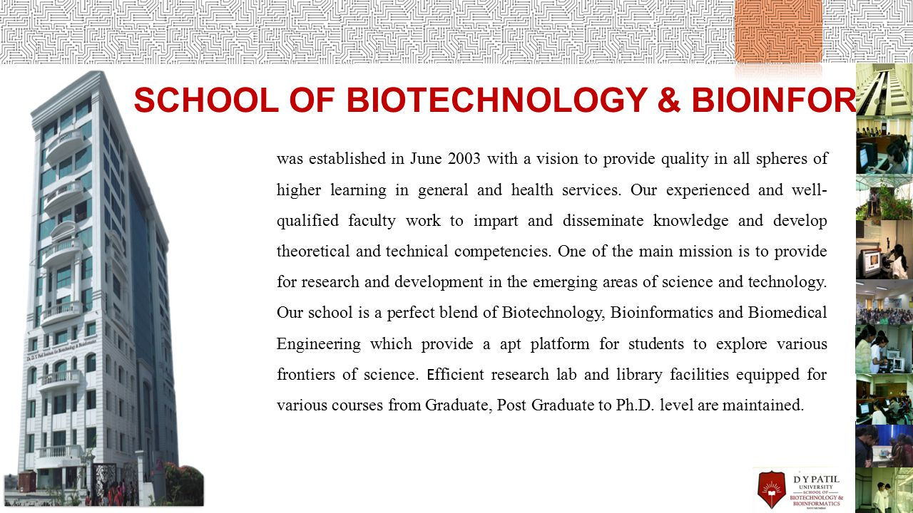SCHOOL OF BIOTECHNOLOGY & BIOINFORMATICS was established in June 2003 with a vision to provide quality in all spheres of higher learning in general and health services.