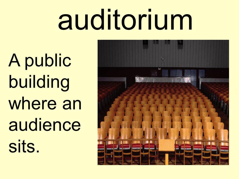 auditorium A public building where an audience sits.