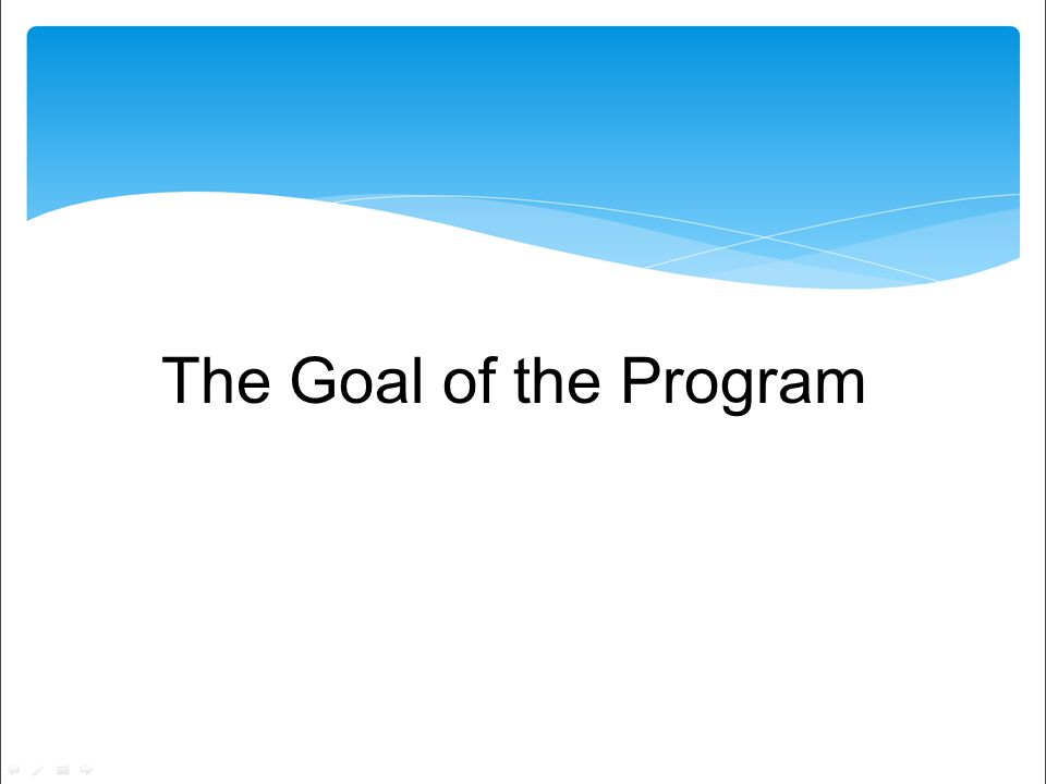 The Goal of the Program