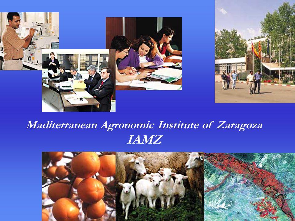 Maditerranean Agronomic Institute of Zaragoza IAMZ