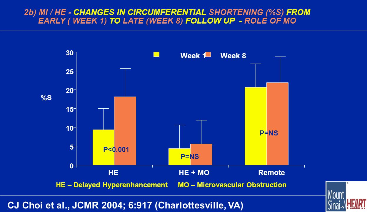 2b) MI / HE - CHANGES IN CIRCUMFERENTIAL SHORTENING (%S) FROM EARLY ( WEEK 1) TO LATE (WEEK 8) FOLLOW UP - ROLE OF MO 0 5 10 15 20 25 30 %S HEHE + MORemote P<0.001 P=NS Week 1 Week 8 CJ Choi et al., JCMR 2004; 6:917 (Charlottesville, VA) HE – Delayed Hyperenhancement MO – Microvascular Obstruction