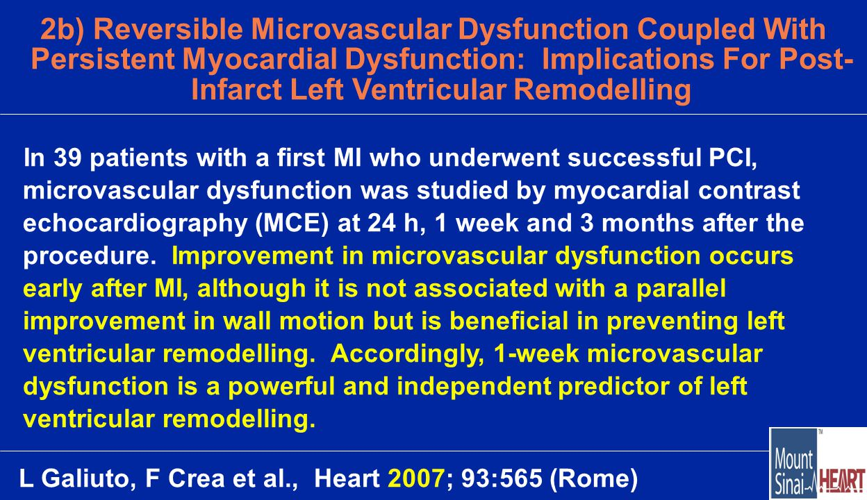2b) Reversible Microvascular Dysfunction Coupled With Persistent Myocardial Dysfunction: Implications For Post- Infarct Left Ventricular Remodelling In 39 patients with a first MI who underwent successful PCI, microvascular dysfunction was studied by myocardial contrast echocardiography (MCE) at 24 h, 1 week and 3 months after the procedure.