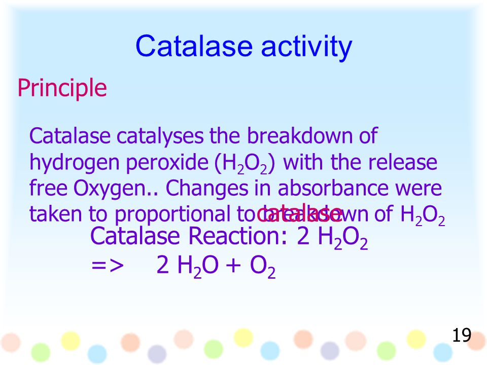 Principle Catalase Reaction: 2 H 2 O 2 => 2 H 2 O + O 2 Catalase catalyses the breakdown of hydrogen peroxide (H 2 O 2 ) with the release free Oxygen..