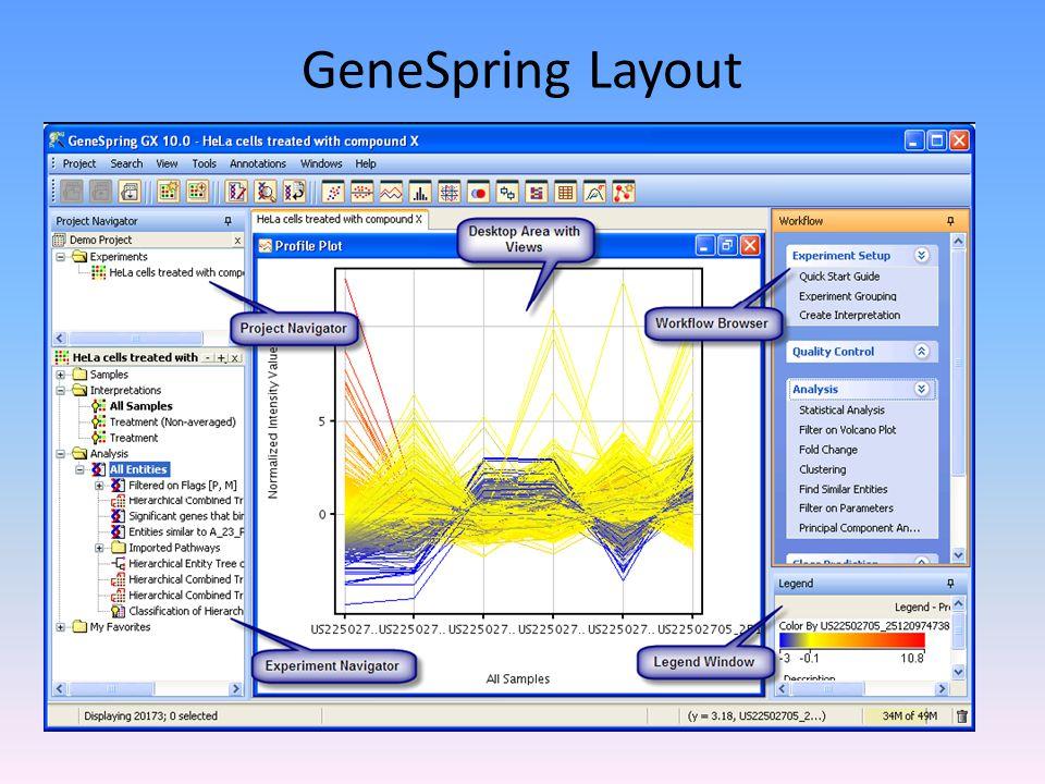 GeneSpring Layout