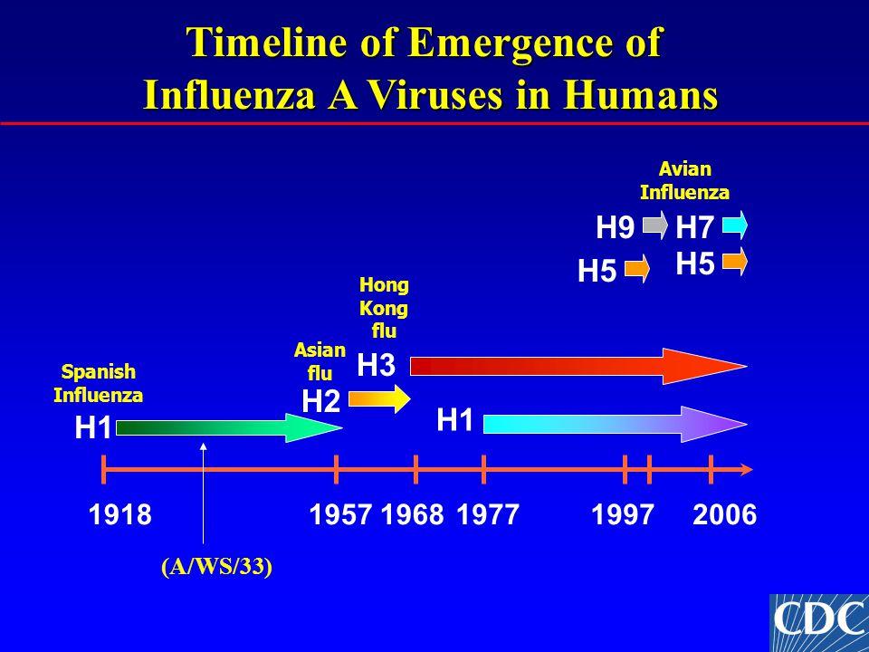 Timeline of Emergence of Timeline of Emergence of Influenza A Viruses in Humans 191819571968197719972006 H1 H3 H2 H7 H5 H9 Spanish Influenza Asian flu Avian Influenza Hong Kong flu (A/WS/33)