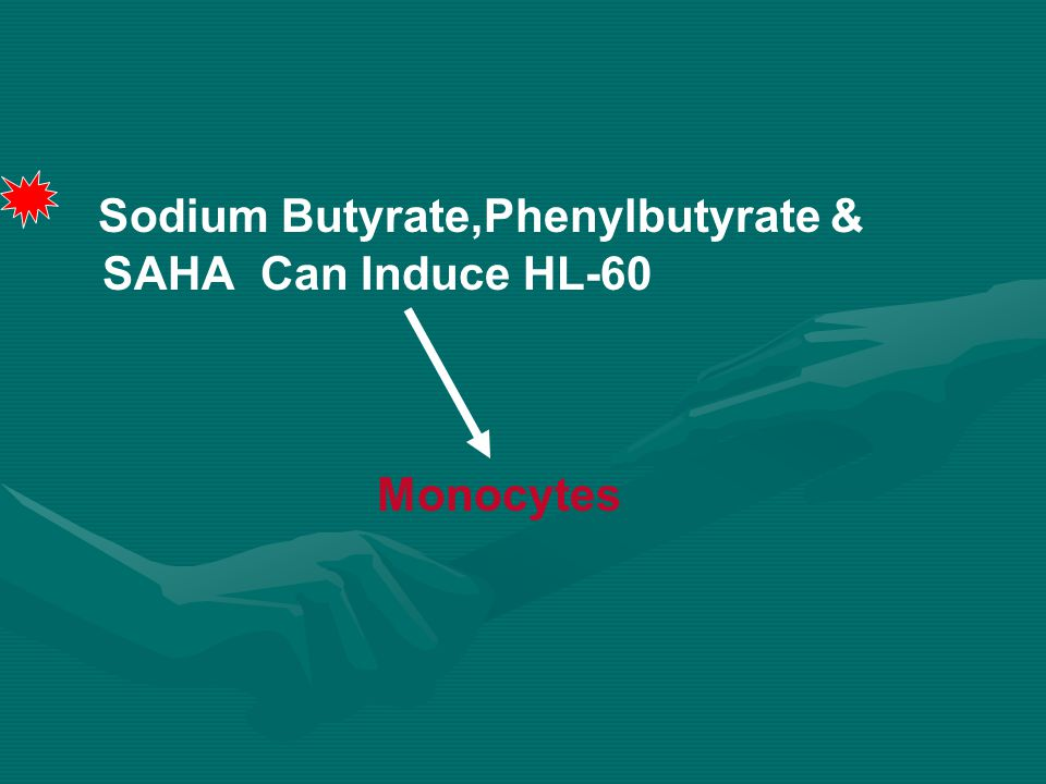 Sodium Butyrate,Phenylbutyrate & SAHA Can Induce HL-60 Monocytes