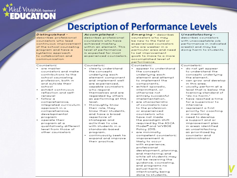 Description of Performance Levels