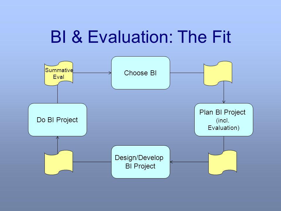 BI & Evaluation: The Fit Choose BI Plan BI Project (incl.