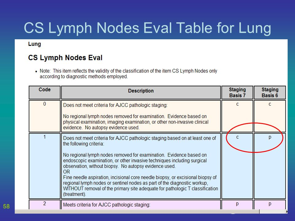58 CS Lymph Nodes Eval Table for Lung 58