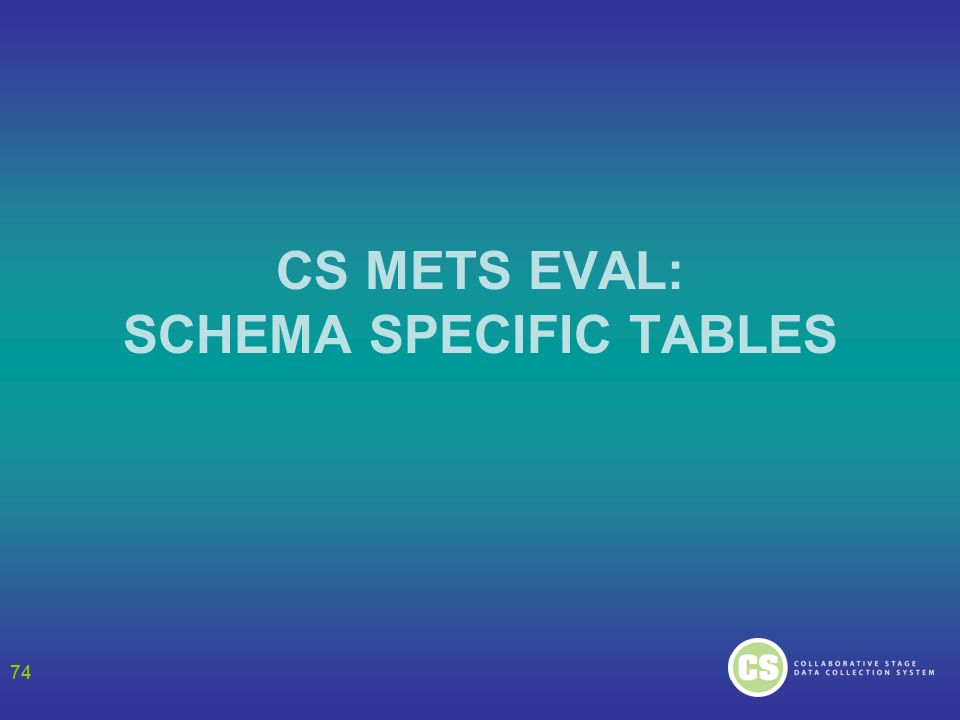 74 CS METS EVAL: SCHEMA SPECIFIC TABLES 74