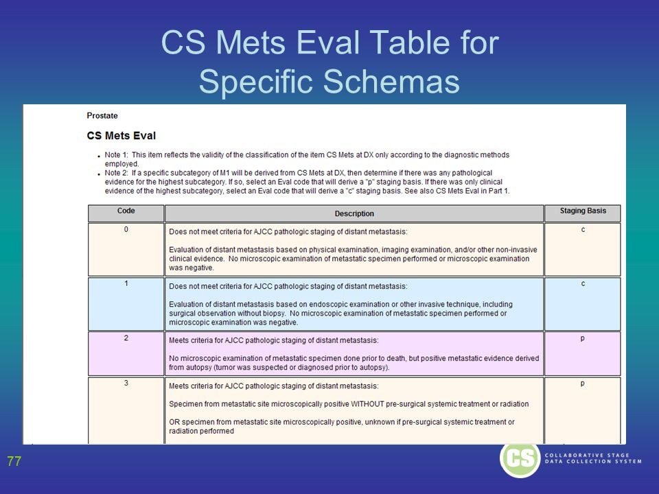 77 CS Mets Eval Table for Specific Schemas 77