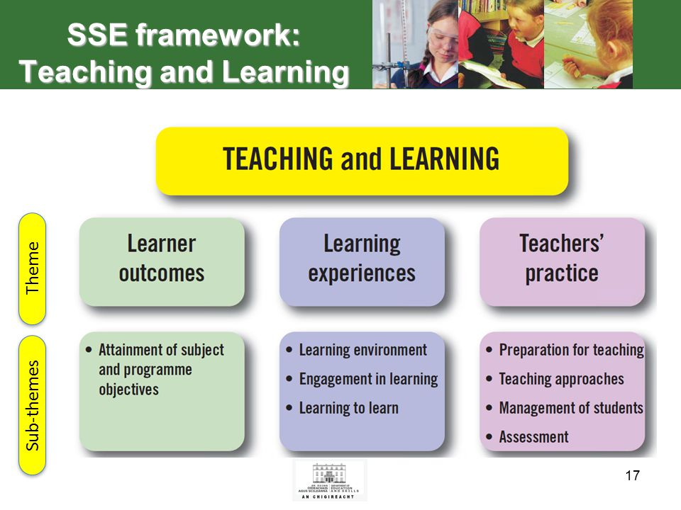 17 SSE framework: Teaching and Learning Theme Sub-themes