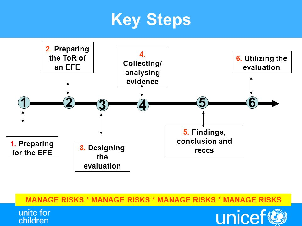 Key Steps 1.Preparing for the EFE 1 2. Preparing the ToR of an EFE 3.