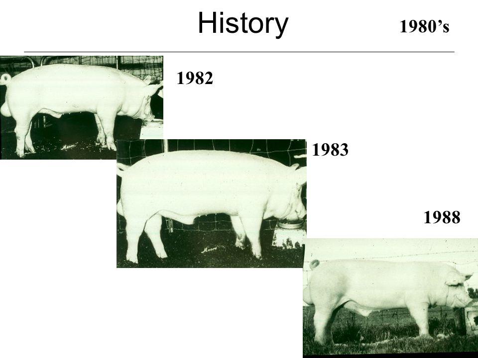 History 1990's 1991 1994